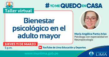 Taller Virtual: Bienestar psicológico en el adulto mayor
